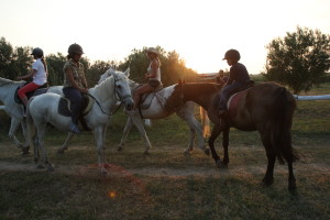 Cursuri de călărie în Skala Prinos